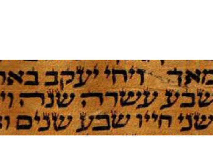 D'var Torah for Parshat Vayechi
