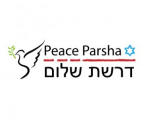 Americans for Peace Now starts up with Drashat Shalom